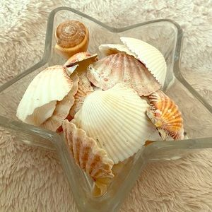 Star Shaped Glass Jar Decor with Seashells